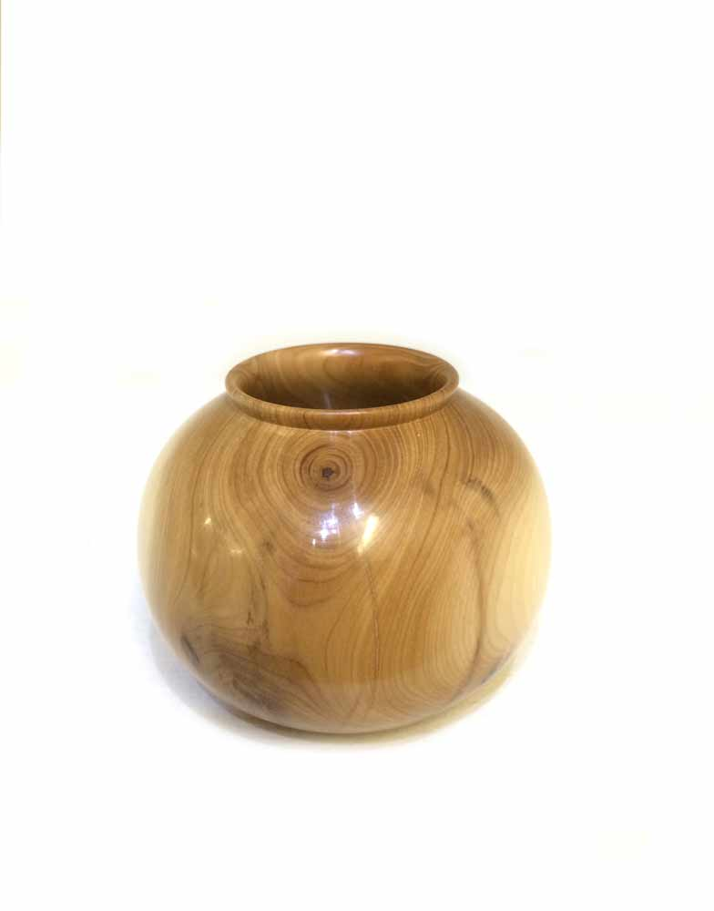 Yew-rounded-little-pot